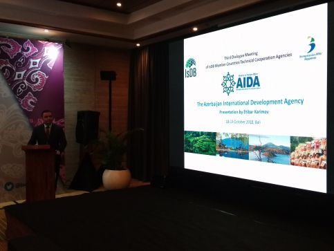 Presentation on AIDA's activities was held at the International Forum on South-South Cooperation in Bali
